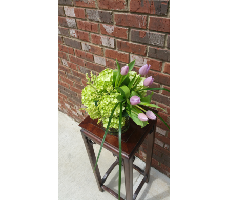 Green hydrangea and tulips in Birmingham AL, Continental Florist