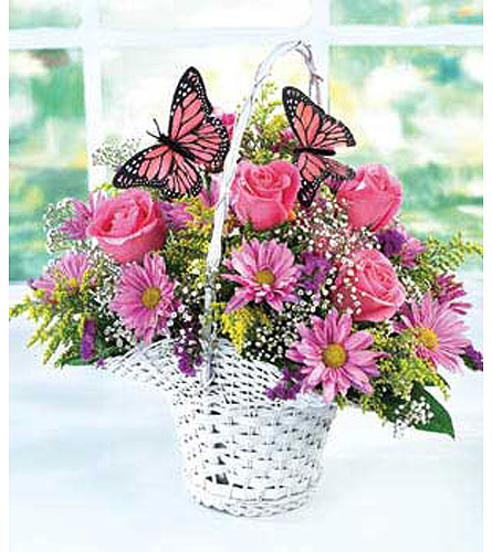 Butterfly Basket!TM