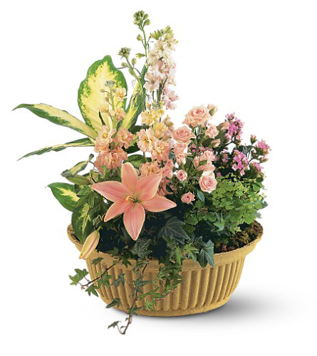Flower & Plant Basket