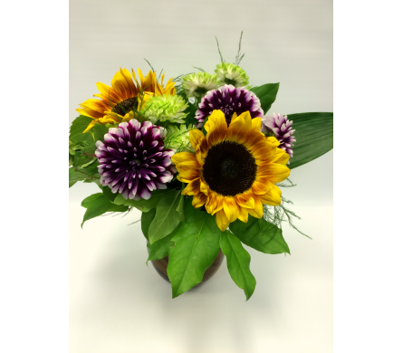 Sunflowers and Dahlias in Belleville ON, Live, Love and Laugh Flowers, Antiques and Gifts