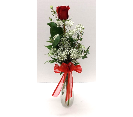 Single Rose in Timmins ON, Timmins Flower Shop Inc.