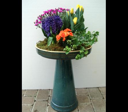 View Larger. BIRDBATH U0026 PLANTS In Cincinnati OH, Robben Florist U0026 Garden  Center