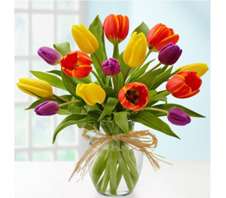 Luscious Tulips in Indianapolis IN, George Thomas Florist