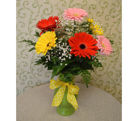 Gerbera Daisy Arrangement in Utica NY, Chester's Flower Shop And Greenhouses