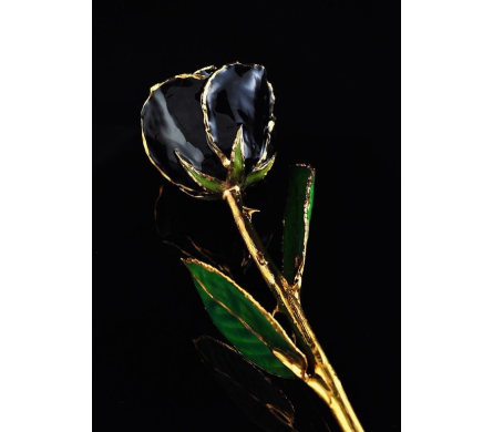 BLACK FOREVER ROSE in Yelm WA, Yelm Floral