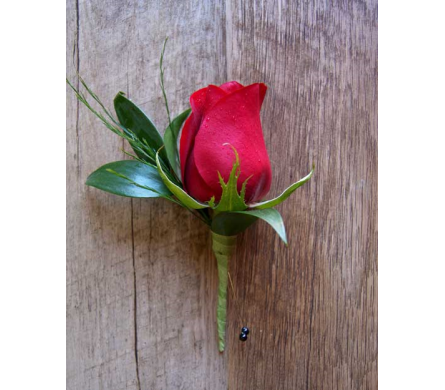 ROSE BOUTONNIERE in Muskegon MI, Wasserman's Flower Shop