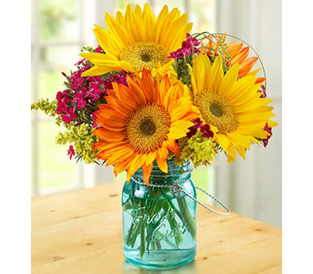 Spring Sunflowers         in Campbell CA, Citti's Florists