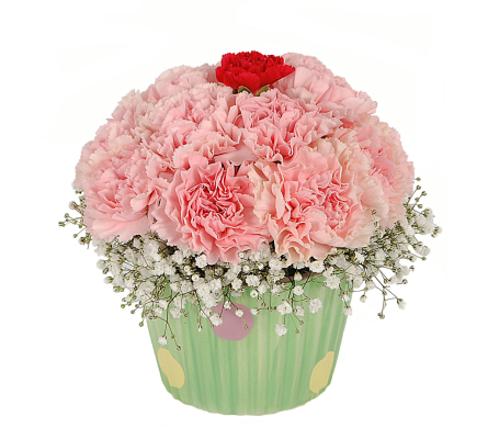 Floral Cupcake in Madison WI, Felly's Flowers