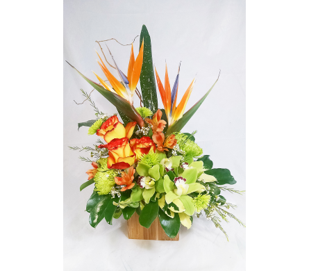 Tropical Mama Bamboo Cube in Naples FL, Naples Flowers, Inc.