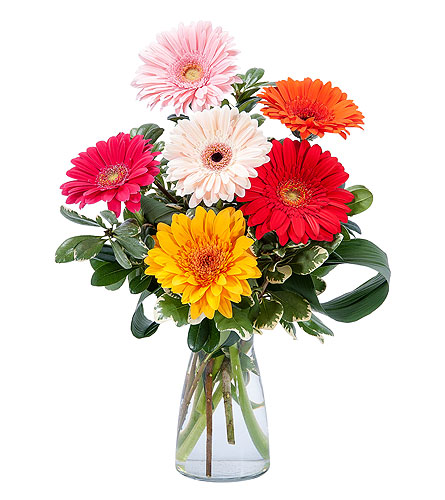 Colorful! in Spartanburg SC, A-Arrangement Florist