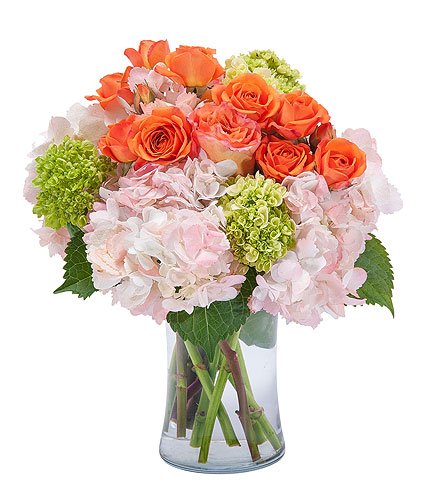 Beauty in Blossom in Exton PA, Blossom Boutique Florist