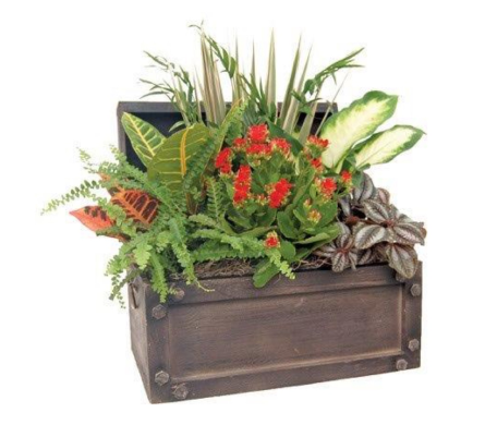 Treasure Planter in St Catharines ON, Vine Floral