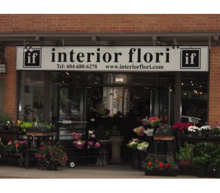 <blank> in Vancouver BC, Interior Flori