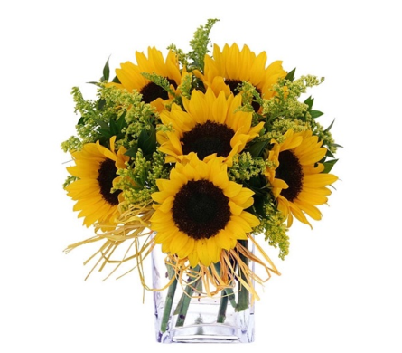 Happy Sunflowers in Needham MA, Needham Florist