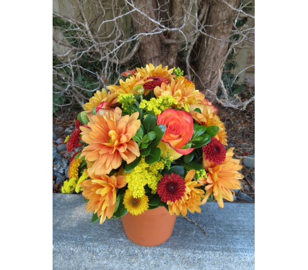 Autumn Breeze in Arcata CA, Country Living Florist & Fine Gifts