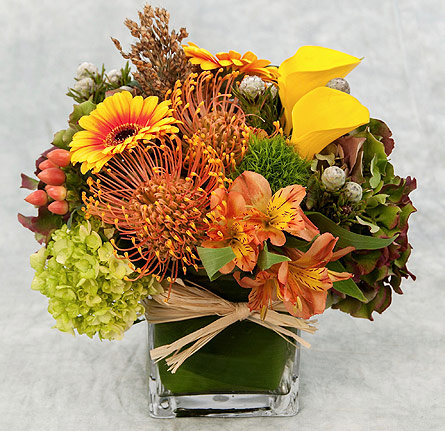 Fall Tradition in Great Neck NY, United Floral