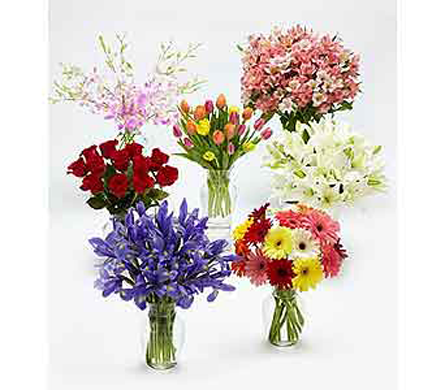 Monthly Flower Gift Plan in Belleville ON, Live, Love and Laugh Flowers, Antiques and Gifts