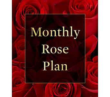 Monthly Rose Plan in Belleville ON, Live, Love and Laugh Flowers, Antiques and Gifts