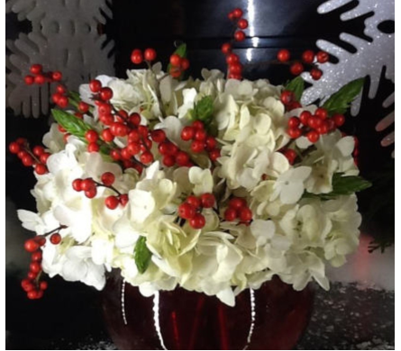 RED SNOWFLAKE in Needham MA, Needham Florist