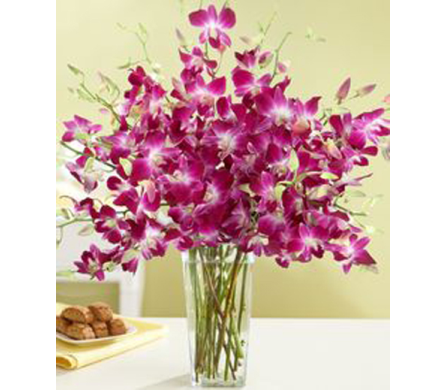 Dazzling Dendrobium in Campbell CA, Citti's Florists