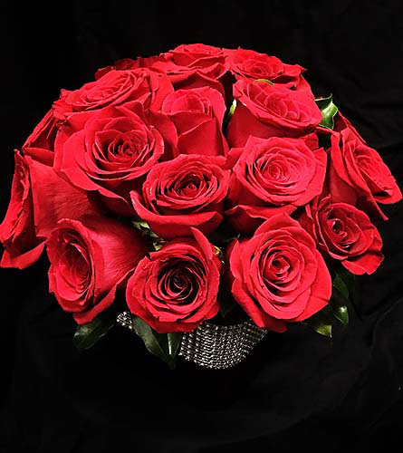 DIAMOND ROSES in Needham MA, Needham Florist