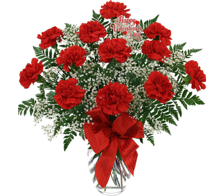 FF178  Blazing Beauty Dozen Red Carnations in Oklahoma City OK, Array of Flowers & Gifts