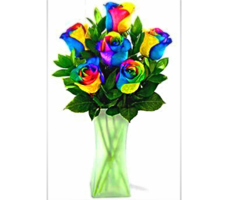 FF156 Rainbow Roses Half Dozen in Vase in Oklahoma City OK, Array of Flowers & Gifts