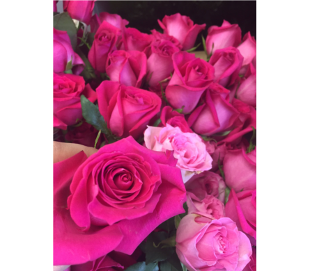 Perfect Pink Roses in Fairfax VA, Exotica Florist, Inc.