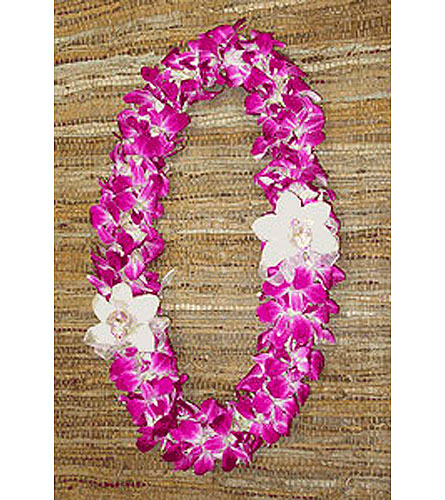Orchid Lei in Campbell CA, Citti's Florists