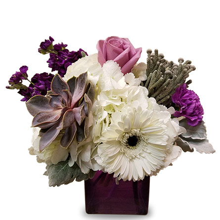Purple and White in Fort Worth TX, TCU Florist