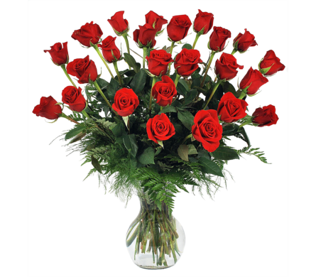 Red Roses, Two Dozen in Madison WI, Felly's Flowers