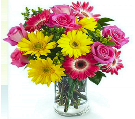 Gerberas & Roses  in Nashville TN, Emma's Flowers & Gifts, Inc.