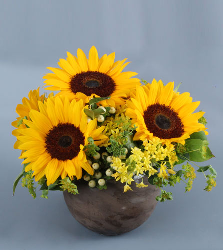 Sunny Summer Dreams in Darien CT, Nielsen's Florist And Garden Shop