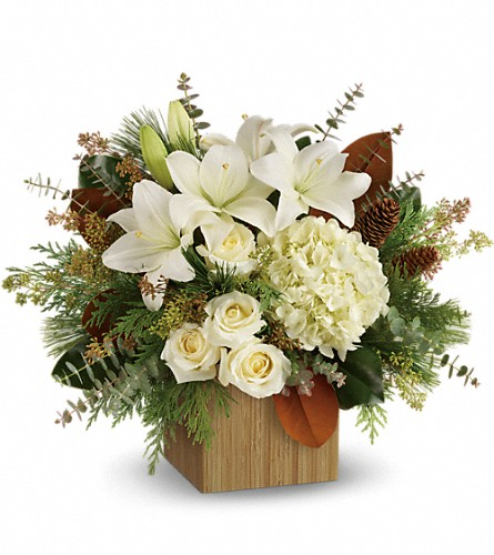 Teleflora's Snowy Woods Bouquet in Menomonee Falls WI, Bank of Flowers