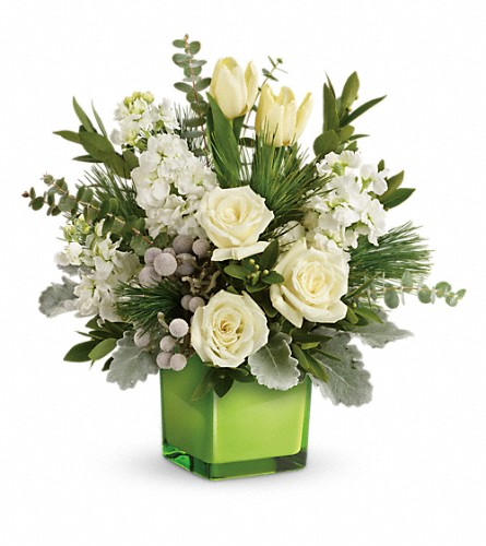 Teleflora's Winter Pop Bouquet in Denver CO, Artistic Flowers And Gifts