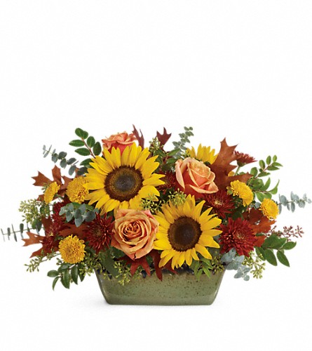Teleflora's Sunflower Farm Centerpiece in McHenry IL, Locker's Flowers, Greenhouse & Gifts