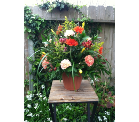 Ray of Light Collection in Arcata CA, Country Living Florist & Fine Gifts