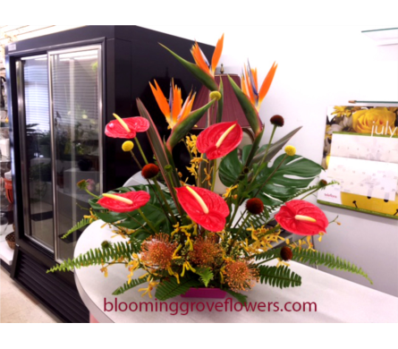 GFG2422 in Buffalo Grove IL, Blooming Grove Flowers & Gifts