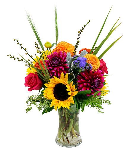 Farm Fresh in Detroit and St. Clair Shores MI, Conner Park Florist