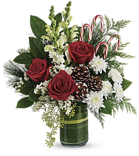 Teleflora's Festive Pines Bouquet in Greenville SC, Touch Of Class, Ltd.