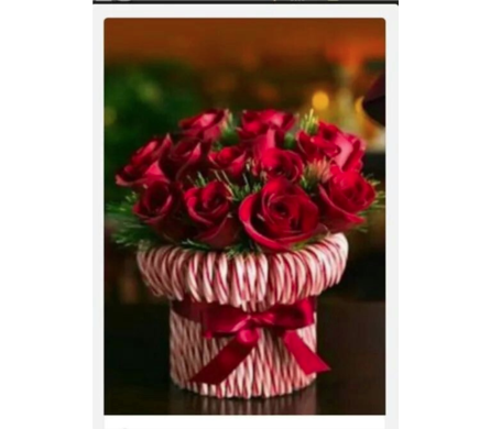 CANDY CANE WITH ROSES in Aston PA, Blair's Florist
