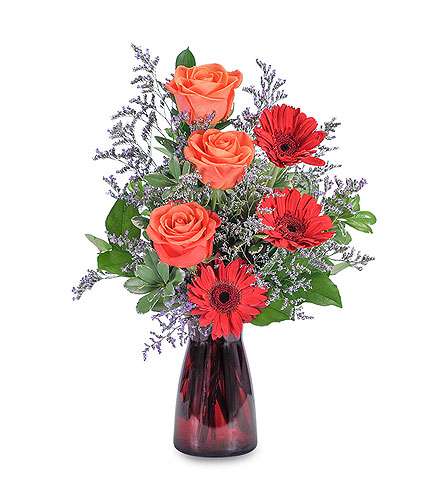 Scarlet Crush in Schaumburg IL, Deptula Florist & Gifts