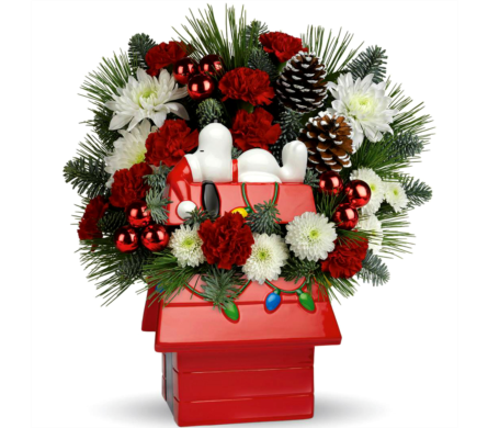 ***SPECIAL OF THE WEEK 3***  SNOOPY HOUSE in Arlington VA, Twin Towers Florist