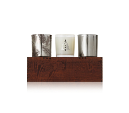 Frasier Fir by Thymes Candle Trio in Little Rock AR, Tipton & Hurst, Inc.
