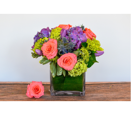 Always Vibrant in Bayside NY, Bell Bay Florist
