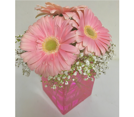 Sweet and Simple Pink Cube Arrangement - 4x4 Cube in Wyoming MI, Wyoming Stuyvesant Floral