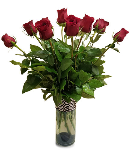 One Dozen Red Roses in Fort Worth TX, TCU Florist