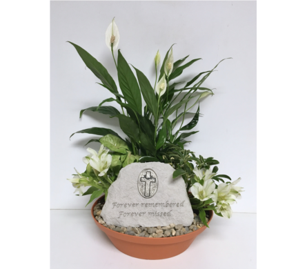 Forever Remembered Stone Dish Garden-10 inch Dish in Wyoming MI, Wyoming Stuyvesant Floral