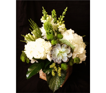 NATURE'S BEST in Needham MA, Needham Florist