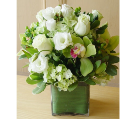 SEATTLE in Needham MA, Needham Florist
